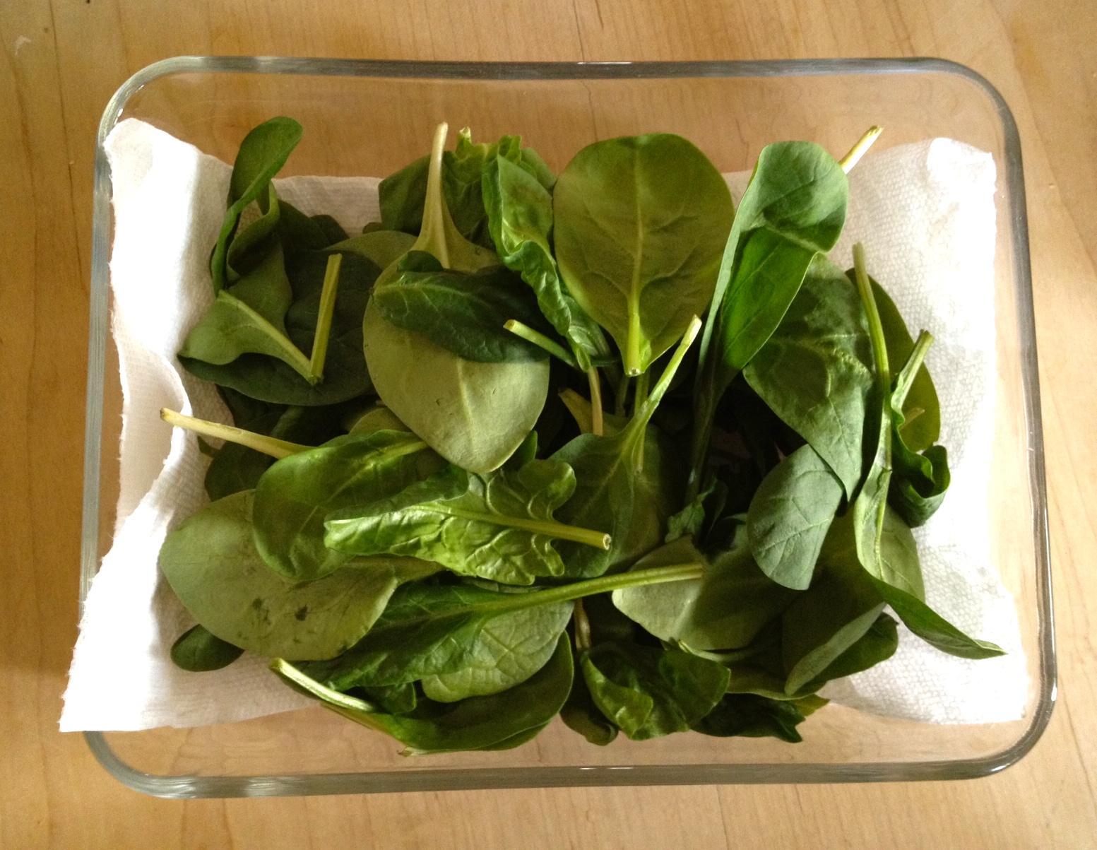 fresh - How To Preserve Celery