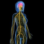 How to retrain your brain for weight loss